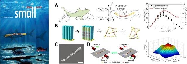 哈工大磁场驱动仿鱼形纳米马达研究取得重要进展