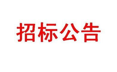 广西正海招标有限公司光纤线路租赁公开招标公告