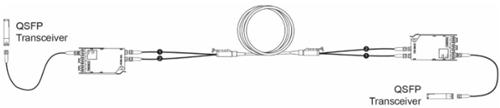 图7: 双MTP/MTP 转换模块系统 (四 MTP/MTP连接器)
