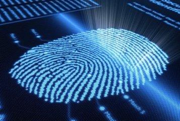 指纹识别芯片厂扩增多元应用 力抗脸部解锁