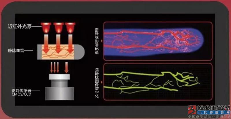 未来五年最有前景的智慧安防生物识别技术——指静脉识别