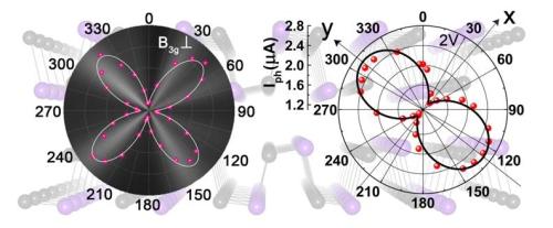 半导体所在二维GeSe的偏振光学特性研究中获进展