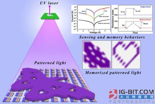 半导体所在柔性人工视觉感知和存储系统研究中获进展