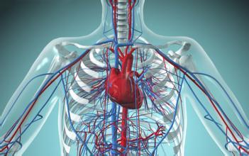 3D打印技术可通过个性化建模实现置换心脏瓣膜