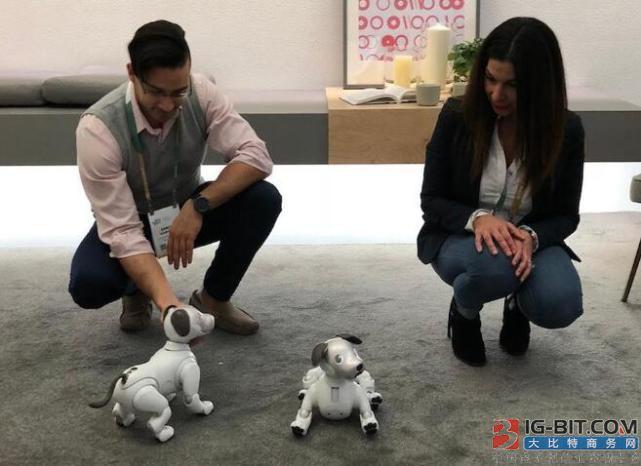 智能音箱将退居二线 智能机器人成未来家庭助手