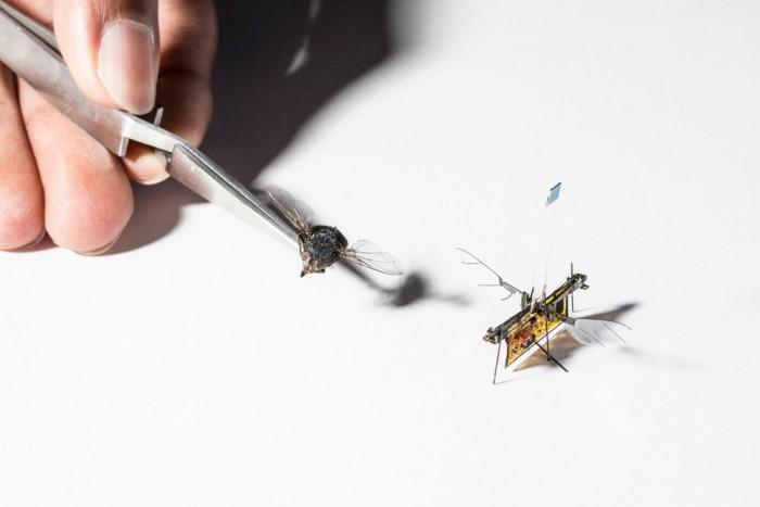 RoboFly成为首款无需系绳的微型飞行机器人 靠激光驱动