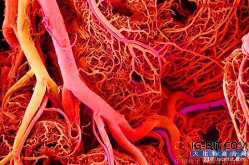 蓝光推出全球首创的3D生物血管打印机
