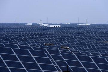青海省1-4月单晶硅产量达到1830.5吨 组件单价平均2.05元/W
