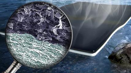 加拿大利用大肠杆菌开发出新型生物太阳能电池