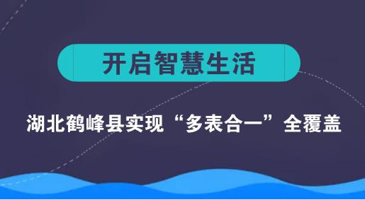 """湖北鹤峰县实现""""多表合一""""全覆盖"""