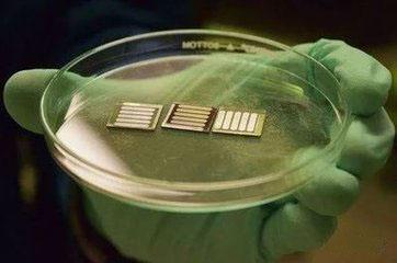 我国科学家在钙钛矿太阳能电池领域取得重要突破