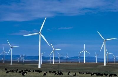 天津首个海上风电项目首批发电机并网发电