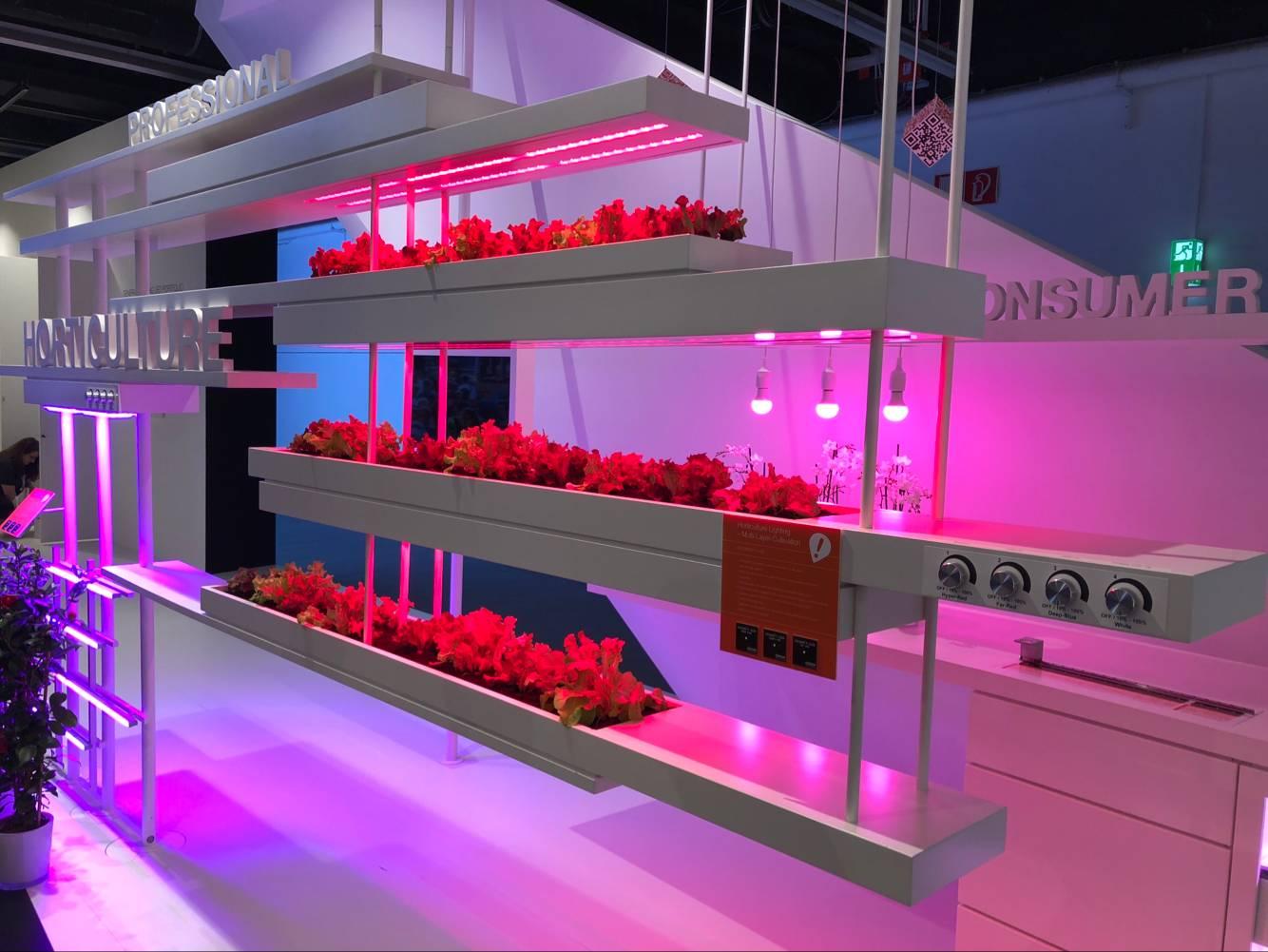 园艺照明火热 全球LED企业纷纷入局