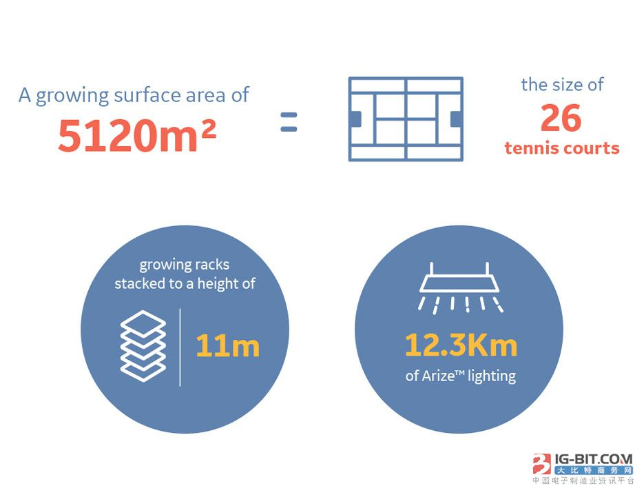 Current与JFC打造欧洲最大的垂直室内农场