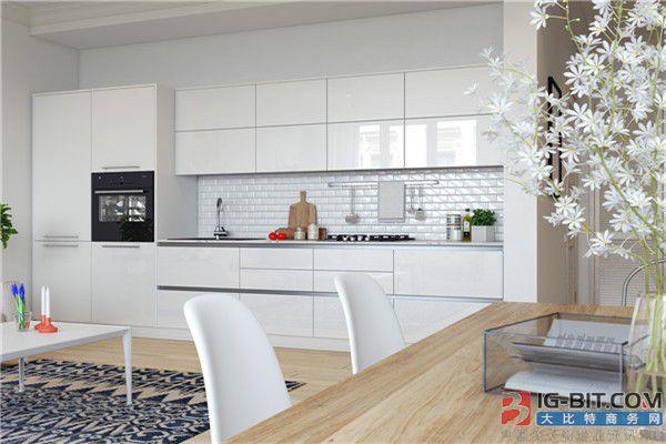 厨房电器行业细分品类逐渐兴起 集成灶市场容量却前景有限