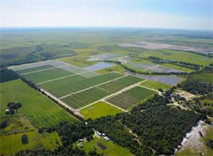 FPL推进佛罗里达州完成四座光伏电站