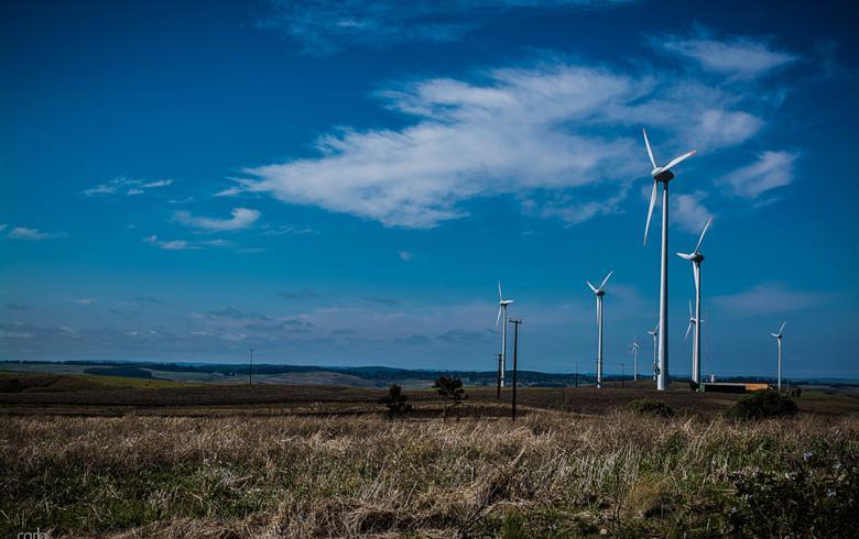 输电基础设施薄弱 印度被迫降低风电招标容量