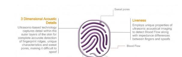 3款三星S10将采用两款不同的屏下指纹识别