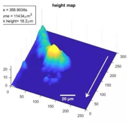 ANU最新研发3D成像诊断设备!
