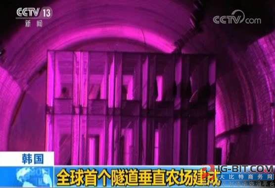 还有这种操作:隧道里能建LED照明垂直农场?