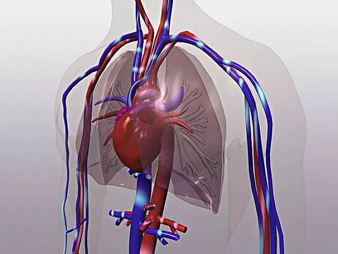 电子医疗在心血管疾病防治中的机遇与挑战
