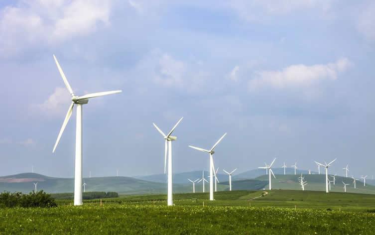 巴西风电快速扩张 明年有望成第二大电力来源