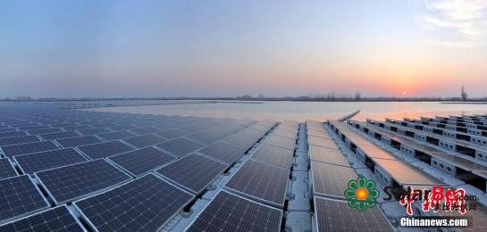 海外市场撑起八成出货 中国太阳能企业利润创新高