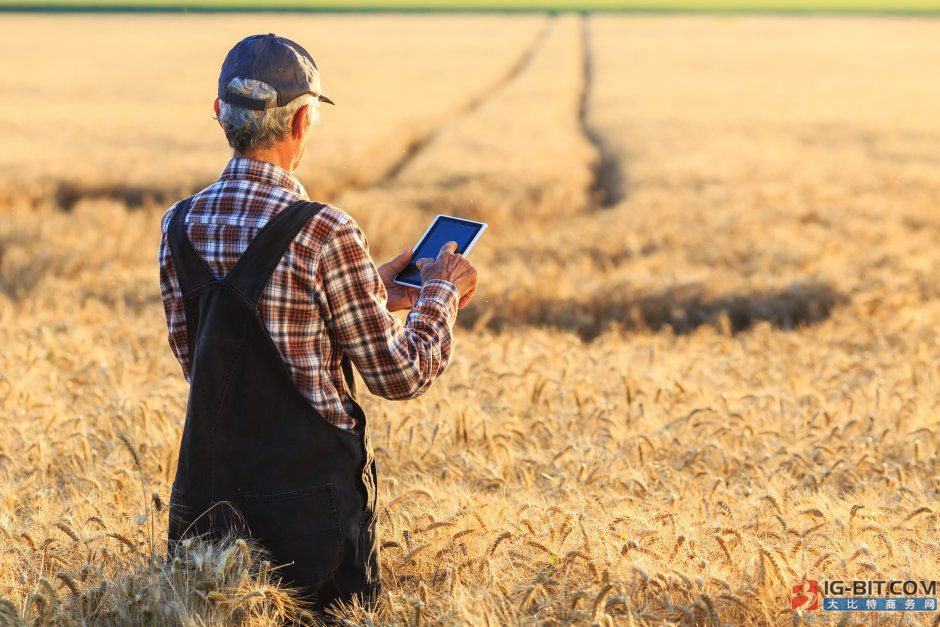 未来的质量管控 欧司朗新型宽带红外LED助力农民制定最佳收割计划