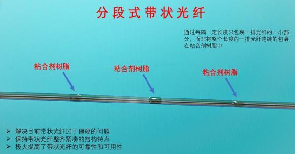 萊塔思推出分段式帶狀光纖