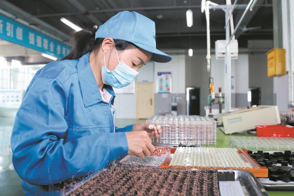 郧西县天河创业园开足马力加快生产