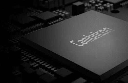 科创板融资28亿元,股民能否撑起AI芯片公司寒武纪的明天?