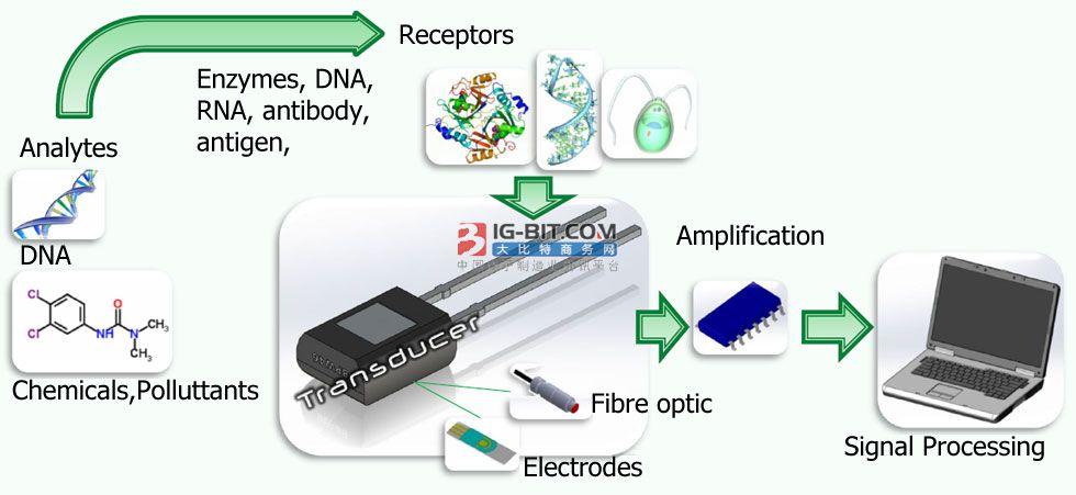 LSA:新型生物传感器技术或有望加速COVID-19患者的血液检测