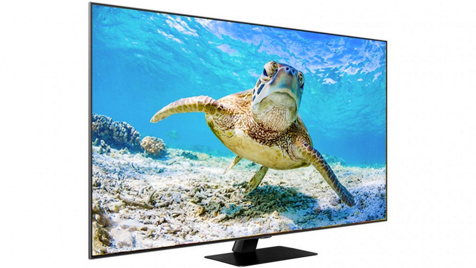 电竞显示成电视行业新兴市场,供需两端给予发展底气