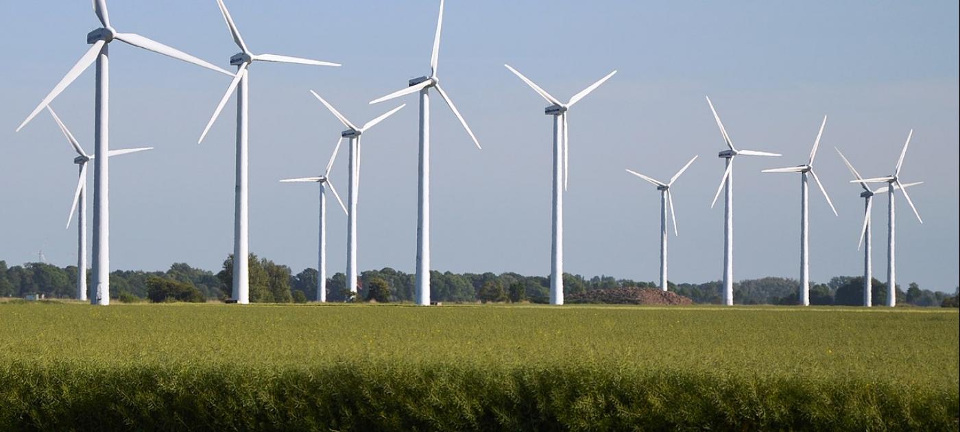 山东省共有544个新能源项目入围国家平价上网项目