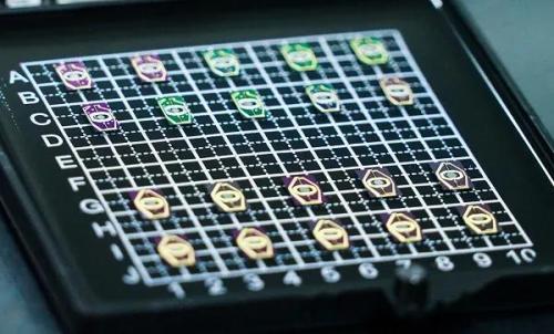 MEMS 芯片阵列