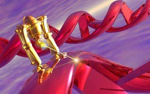 """结肠翻滚""""机器人"""",精准投药新可能"""