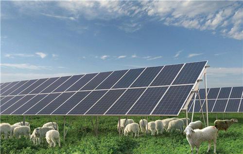 南非:能源结构改革取得成效 太阳能产业稳步发展