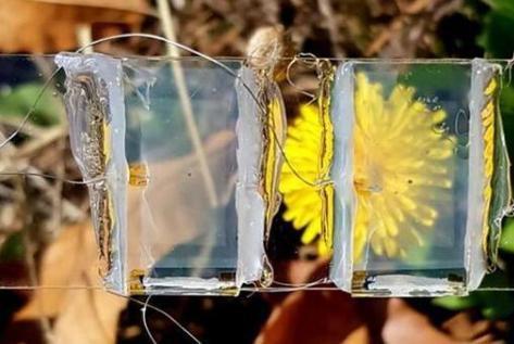 透明太阳能电池让窗户也能发电
