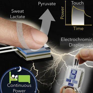 """手指变成 """"移动电源""""?创可贴式可穿戴传感器让汗水也能 """"发电"""""""