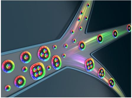 """我国学者与海外合作者在磁性材料中发现·多拓扑荷特性""""磁束子"""""""