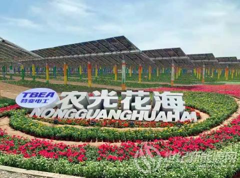 光伏+科技农业,助力乡村振兴